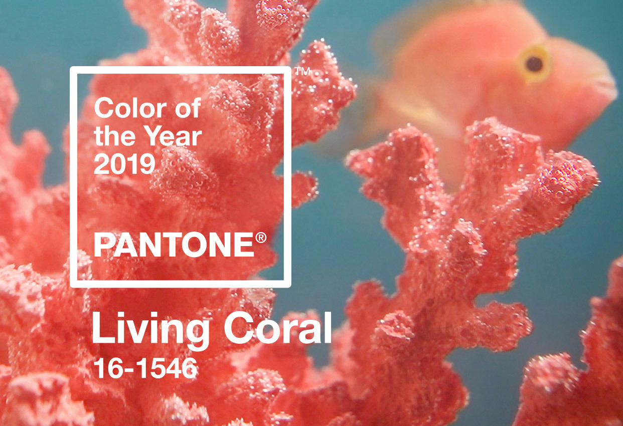 PANTONE 16-1546 Living Coral Color of the year 2019